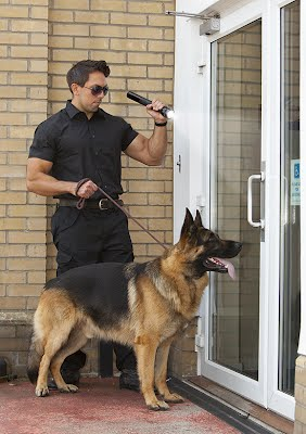 K-9 Services South Florida